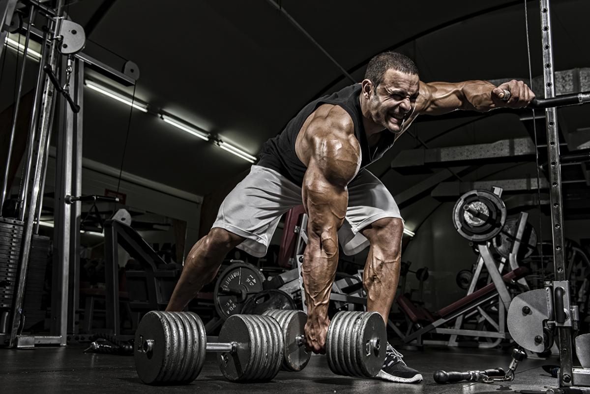 Bodybuilding_Men_511666